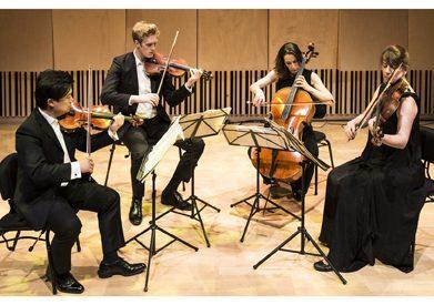 Flinders Quartet 2018 playing photo credit Pia Johnson landscape
